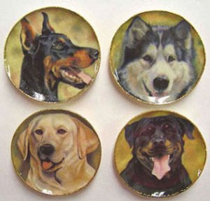 dogs on platters