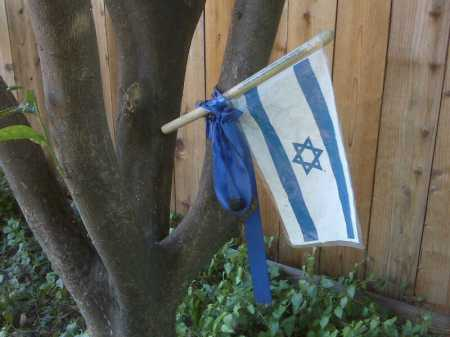 flag in our yard 2